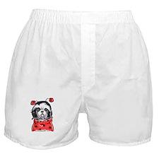 Shih Tzu Ladybug Boxer Shorts