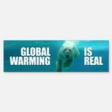 GLOBAL WARMING IS REAL Bumper Bumper Bumper Sticker