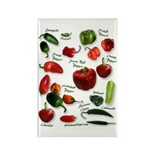 Hot Chili Peppers Rectangle Magnet (100 pack)
