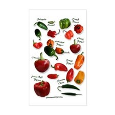 Hot Chili Peppers Rectangle Decal