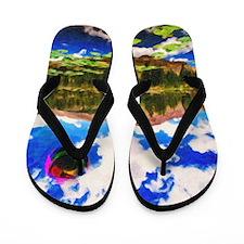 Mountain Lake Flip Flops