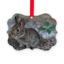 Bunny Baby Ornament