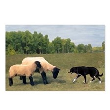 Dog Meets Sheep Postcards (Package of 8)