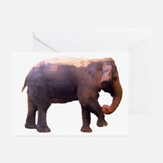 elephant4 Greeting Cards (Pk of 10)