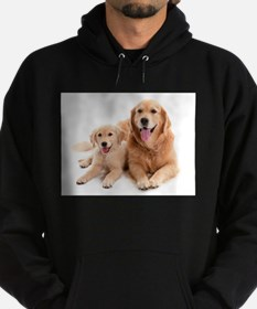 Golden retriever buddie Sweatshirt
