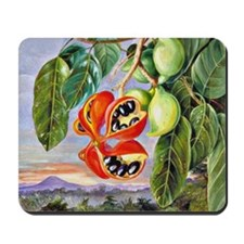 Marianne North: Foliage and Fruit of Ste Mousepad