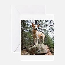 Red Heeler in Mountains Greeting Card