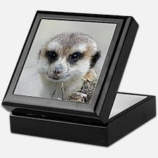 Meerkat001 Keepsake Box