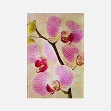 Orchid Flowers Magnets