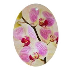 Orchid Flowers Ornament (Oval)
