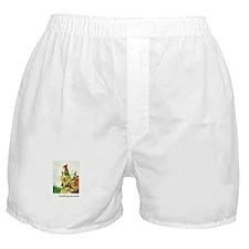 Knitting Gnome Boxer Shorts