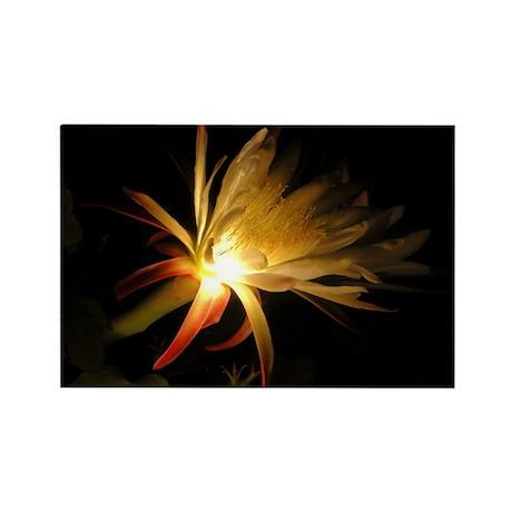 Cereus Cactus Blossom Rectangle Magnet (100 pack)