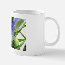 Enzian Mug