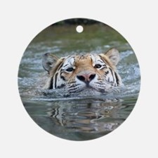 Tiger005 Round Ornament