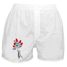 Bomb Pop balloons original artwork Boxer Shorts