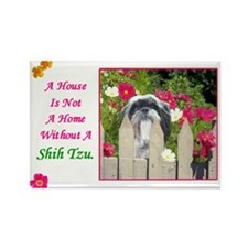 Shih Tzu (Black & White) Rectangle Magnet (100 pac