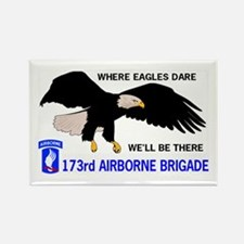 173rd AIRBORNE Rectangle Magnet (10 pack)