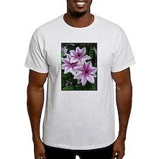 Clematis Ash Grey T-Shirt