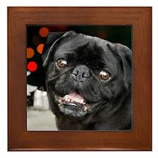 Christmas pug dog Framed Tile