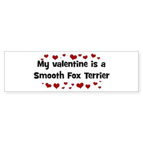 Smooth Fox Terrier valentine Bumper Sticker