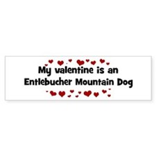 Entlebucher Mountain Dog vale Bumper Bumper Sticker