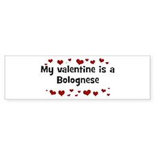 Bolognese valentine Bumper Bumper Sticker