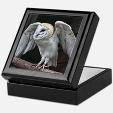 Barn Owl about to fly. Keepsake Box