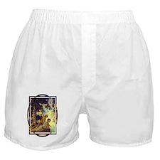 Waterfall Boxer Shorts