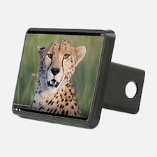 Cheetah - blood on my cheek. Yum! Hitch Cover