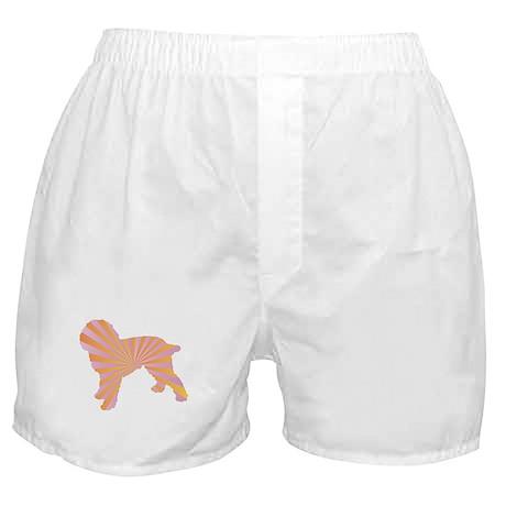 Cockapoo Rays Boxer Shorts