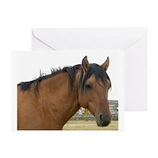 Ruger- Kiger Mustang Greeting Card