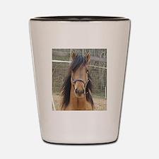 Mustang Shot Glass