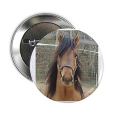 "Mustang 2.25"" Button"