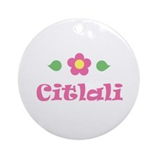 """Pink Daisy - """"Citlali"""" Ornament (Round)"""