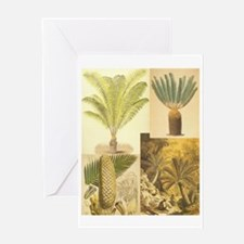 Cycads of the 1800s Greeting Card