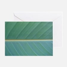 Bird of Paradise Leaf Greeting Card
