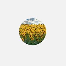 Sunflower Field shwr Mini Button (100 pack)
