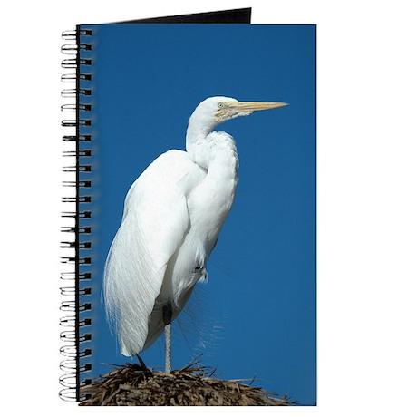 Great Egret Journal