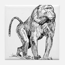 Baboon Sketch Tile Coaster