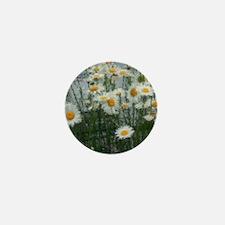daises Mini Button