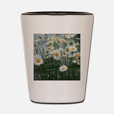 daises Shot Glass