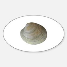 Quahog Clam Decal