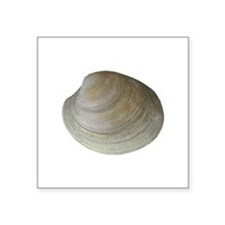 Quahog Clam Sticker