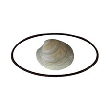 Quahog Clam Patches