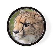 Cheetah005 Wall Clock
