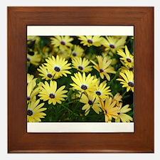 Black Eyed Susans Framed Tile