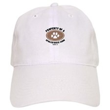 Doxie-Chon dog Baseball Cap
