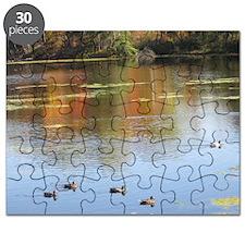 Mantle Lake Autumn Ducks Puzzle