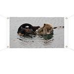 California Sea Otter Banner
