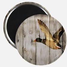 barnwood wild duck Magnet